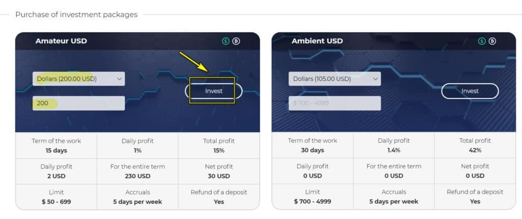 forrise deposit 1024x431 - [SCAM] Forrise Review - HYIP: Giới thiệu nền tảng đầu tư dài hạn forrise.com